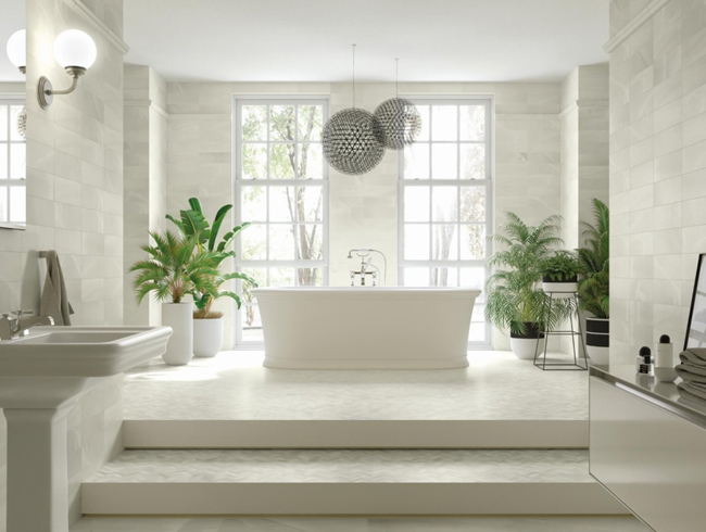 Home spa bathroom plants