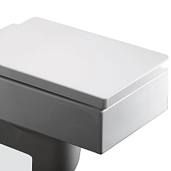 Zone Square Toilet Seat